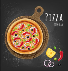 Pizza mexican vector image