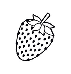 strawberry fruit isolated icon vector image