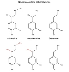 Structural chemical formulas of neurotransmitters vector