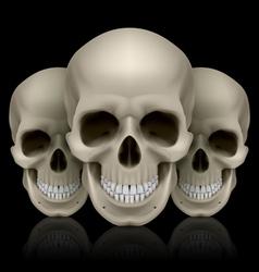 Three skulls vector image vector image