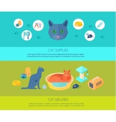 ICats 2 flat banners composition poster vector image