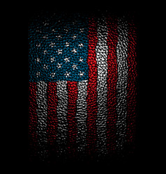 american leather vector image