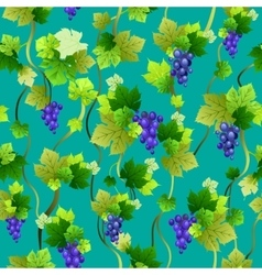 Blue grapes seamless pattern vector image