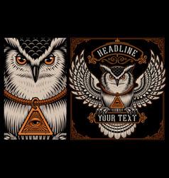owl on dark background vector image