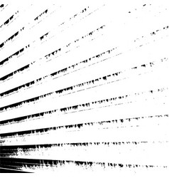 striped grunge texture vector image
