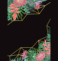 tropical flower and geometric background vector image