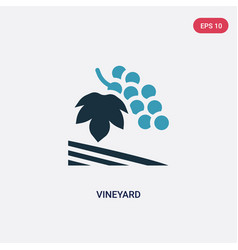 Two color vineyard icon from nature concept vector