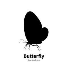 black silhouette butterfly vector image vector image