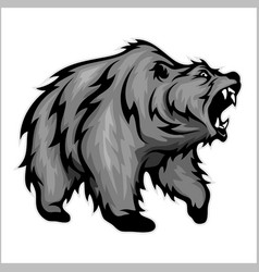 Grizzly bear mascot vector