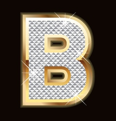 b bling bling vector image