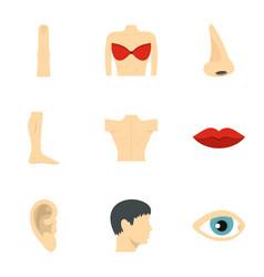 human anatomy icons set flat style vector image
