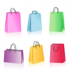 shopping package vector image vector image