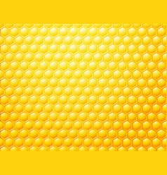 Bee honeycombs background template for your vector