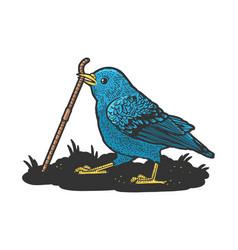 Bluebird pulls worm sketch vector