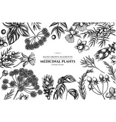 floral design with black and white angelica basil vector image