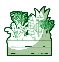 Green silhouette of wooden box with vegetables vector