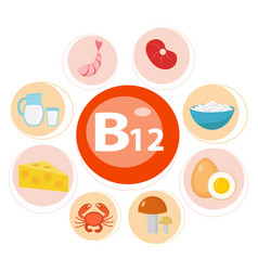 Infographic set vitamin b12 healthy lifestyle vector