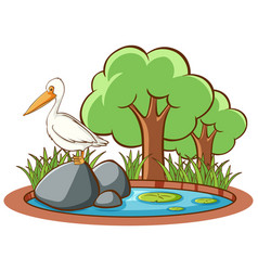 isolated picture stork on rock vector image