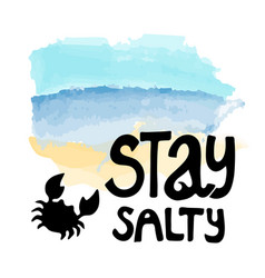 Lettering logo stay salty vector