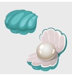 Open and closed shell box with white pearl vector image
