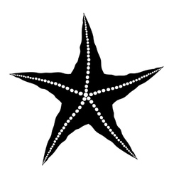 Silhouette of Starfish vector