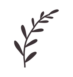 Silhouette stems with few leaves vector