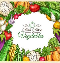 Sketch poster of fam vegetables or veggies vector