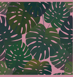 Tropical palm monstera leaves seamless pattern vector