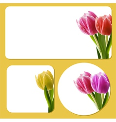 Tulip background templates vector image