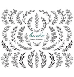 big set hand drawn plants and branches vector image