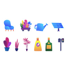 decorative houseplants and gardening vector image