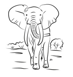 elephant drawn contour black coloring vector image