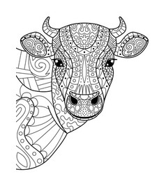 head cow coloring book for adults vector image