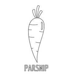 Parsnip icon outline style vector