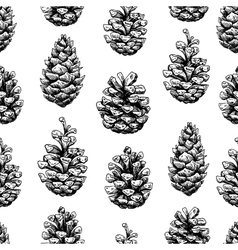 Pine cone seamless pattern Botanical hand drawn vector image