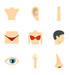 body parts icons set flat style vector image