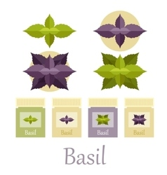 Basil icons set vector image