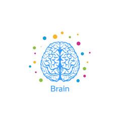 a brain image a person vector image