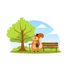 cute squirrel in black top hat walking in park vector image