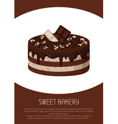Delicious sweet cake of white and dark chocolate vector