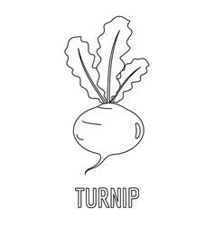 turnip icon outline style vector image
