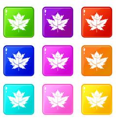 Gooseberry leaf icons 9 set vector