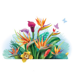 Arrangement with strelitzia flowers vector