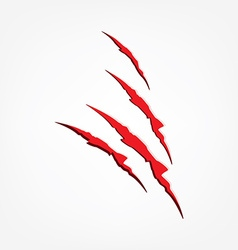 Red claw scratches vector image