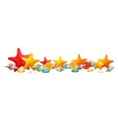 Sea stars and shells vector