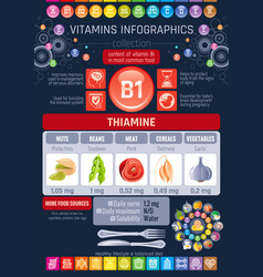 Thiamine vitamin b1 food icons healthy eating vector