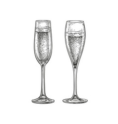 Two glasses champagne vector