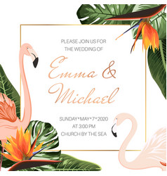 wedding event invitation card template tropical vector image