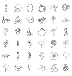 berry icons set outline style vector image vector image