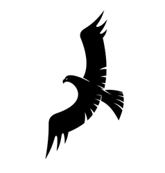 Black eagle flying with spread wings vector image